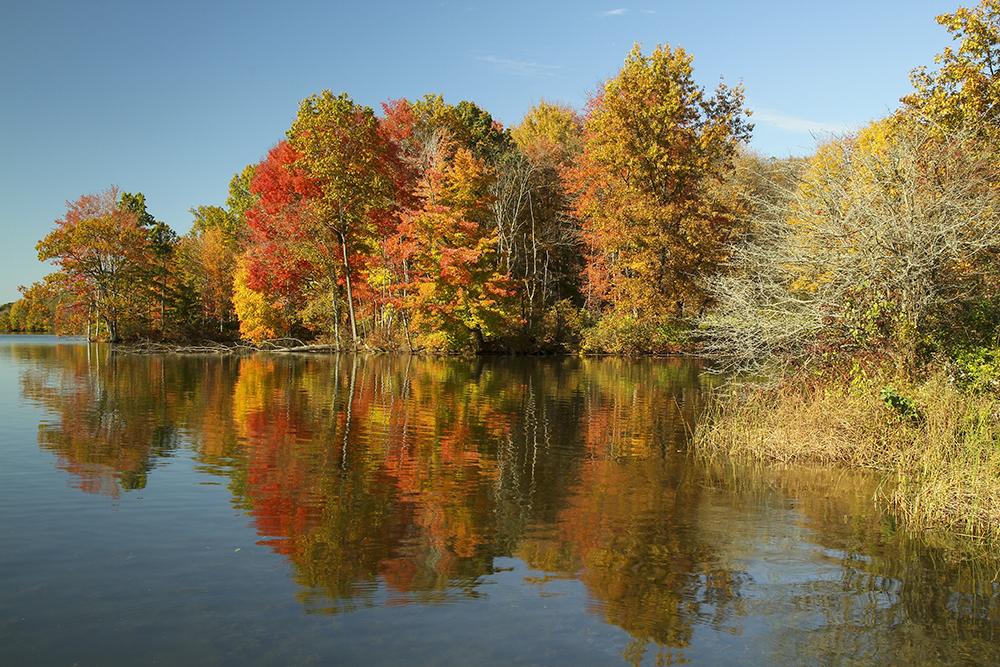 Autumn trees in Pennsylvania